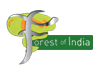 Forest of India, WD5 0AA
