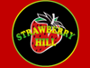 Strawberry Hill, E17 3LX